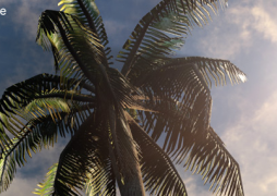 Создание пальмы в SpeedTree и импорт в UDK Часть 1