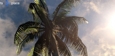 Создание пальмы в SpeedTree и импорт в UDK Часть 3