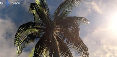 Создание пальмы в SpeedTree и импорт в UDK Часть 4