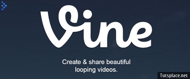 Видео с клубничкой в Vine стало под запретом