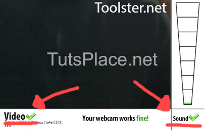 ToolSter проверка веб-камеры